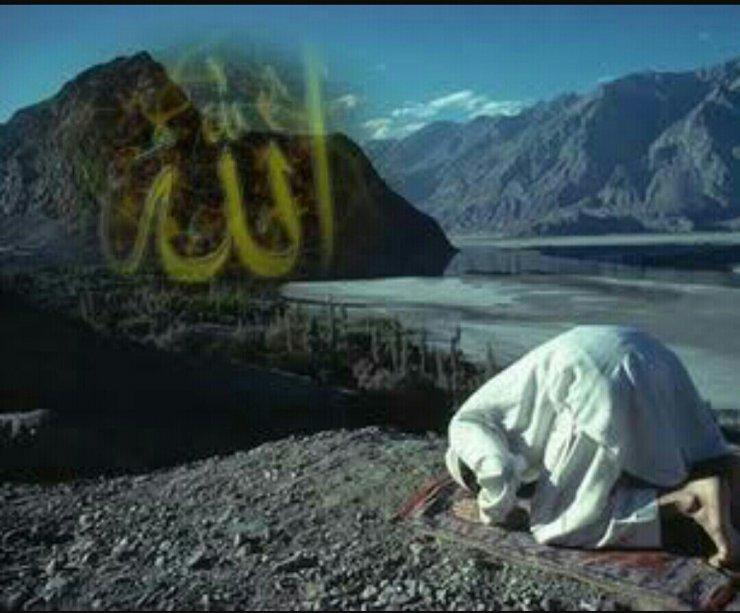 """""""Onun bu yolda müəllimi olmamışdır. Tövhid elmini birbaşa Allahdan almışdı"""""""