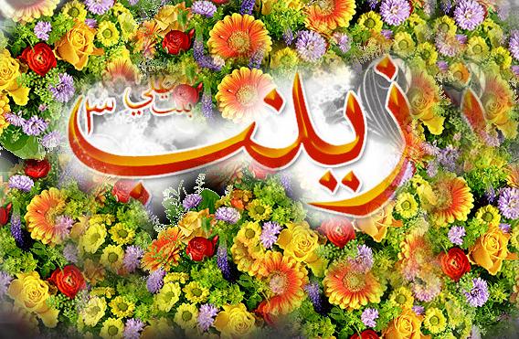 İslamın əzəmətli qadını Xanım Zeynəbin (s.ə) mövlud gecəsidir