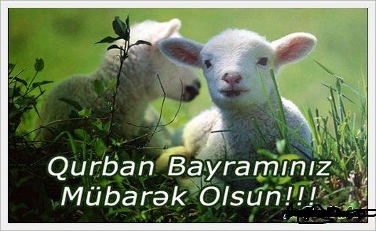 Qurban bayramı münasibəti ilə Əhli-beyt (ə) cəmiyyətinin təbrik bəyanətı